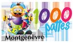 La Course des 1000 Pattes